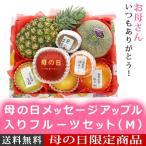 予約 母の日 ギフト 母の日メッセージアップル入りフルーツセット(M) 名入れのし付きフルーツギフト 果物 詰め合わせ