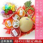 予約 母の日 ギフト レインボーカーネーションの生花付き果物詰め合わせ(L) 名入れのし付きフルーツギフト 果物 詰め合わせ