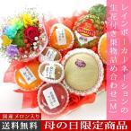 予約 母の日 ギフト レインボーカーネーションの生花付き果物詰め合わせ(M) 名入れのし付きフルーツギフト 果物 詰め合わせ
