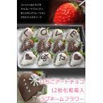 お歳暮 ギフト チョコ いちごアートチョコ ラブネームフラワー 12粒入り 誕生日 サプライズ いちご ギフト イチゴ 苺 ハロウィン 贈り物 送料無料