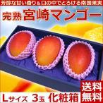 宮崎マンゴーLサイズ3玉化粧箱 完熟宮崎アップルマンゴー 送料無料 プレゼント 母の日