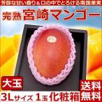 宮崎マンゴー大玉3Lサイズ1玉化粧箱 完熟宮崎アップルマンゴー 送料無料  プレゼント 母の日