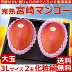 宮崎マンゴー大玉3Lサイズ2玉化粧箱 完熟宮崎アップルマンゴー 送料無料  プレゼント 母の日