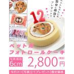 プレゼントキャンペーン中 ペット用フォトロールケーキ 写真部分 直径6cm 写真ケーキが作れる写真シートとペット用ロールケーキをセットで 送料無料