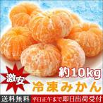 激安 冷凍みかん 10kg デザート 冷凍フルーツ 果物 みかん 業務用 ご家庭に