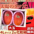 宮崎マンゴー 太陽のタマゴ 超大玉4Lサイズ2玉化粧箱 完熟宮崎アップルマンゴー 送料無料 お中元 太陽のたまご マンゴー父の日