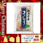 父の日 プレゼント ギフト 花 米 2021 カード 米 新潟県産 コシヒカリ(1kg)