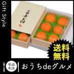 お取り寄せ グルメ ギフト フルーツ 柿 家 ご飯 巣ごもり 食品 フルーツ 柿 長野 氷結市田柿