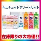 快気祝い 洗剤 ギフト 内祝い 洗剤 人気ギフト P&G アリエールパワージェルボールセット PGAG-10