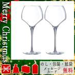 クリスマス プレゼント アルコールグラス ギフト 2020 アルコールグラス シェフ&ソムリエ タニック ワインペア