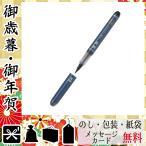 お中元 御中元 ギフト 2020 ボールペン 人気 おすすめ ボールペン パイロット 瞬筆(やわらかめ)