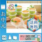 お中元 御中元 ギフト 2020 アイスクリーム 人気 おすすめ アイスクリーム 北海道 夕張メロンアイス