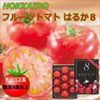 お中元 ギフト フルーツトマト はるか8 約800g 内祝 お返し お礼 お取り寄せ 北海道