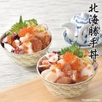 ギフト 北海道産 勝手丼 海鮮丼 セット 詰め合わせ 内祝い お祝い お返し 快気祝い