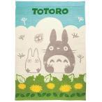 ★送料無料★丸眞 となりのトトロ タオルケット「トトロのひなたぼっこ」