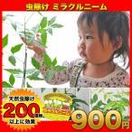 ニーム ミラクルニーム 虫除け ニームの木 ミラクルハーブ 蚊よけ植物 蚊除け 防虫 害虫 有機栽培にこだわる観葉植物
