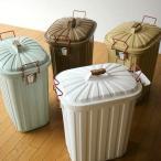 ゴミ箱 ごみ箱 おしゃれ キッチン ふた付き 大型 60リットル サニタリー 屋外 インテリア パステルカラーのダストボックス