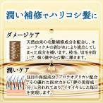 すっぴん地肌ナチュラルスカルプシャンプー「頭皮のかゆみ・フケ」「脂漏性」脂漏性皮膚炎研究者が開発