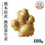 生姜 無農薬 100g 熊本県産 国産生姜 しょうが ショウガ 根生姜