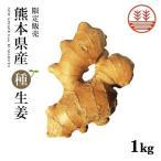 種生姜 熊本県産 無農薬生姜 1kg 国産 生姜 しょうが ショウガ 生姜栽培 しょうが栽培 家庭菜園 種しょうが 種生姜 たね生姜 生姜種 生姜の種 種芋