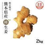 種生姜 熊本県産 無農薬生姜 2kg 送料無料 国産 生姜 生姜栽培 しょうが栽培 家庭菜園 たねしょうが 種しょうが 種生姜 たね生姜 生姜種 生姜の種 栽培 種芋