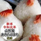 米 10kg 新米 無洗米 乾式無洗米 山形産あきたこまち 送料無料 平成29年産