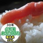 米 20kg 新米 無洗米 乾式無洗米 山形産あきたこまち 送料無料 平成29年産
