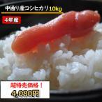 お米 米 10kg 無洗米 乾式無洗米 福島中通り産コシヒカリ 送料無料 平成30年産 1等米 お米