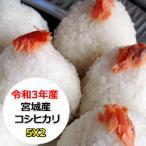 米 10kg 宮城産コシヒカリ 無洗米 乾式無洗米 送料無料 平成29年産