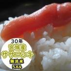 米 20kg 新米 宮城産ササニシキ 無洗米 乾式無洗米 送料無料 平成29年産