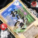 29年産 北海道産 おぼろづき 5kg 白米 送料無料