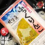 29年産 北海道産 ふっくりんこ 5kg 白米 送料無料