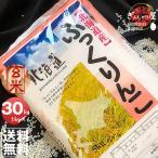 29年産 北海道産 ふっくりんこ 玄米 30kg (5kg×6袋セット) 玄米/白米/分づき米 送料無料
