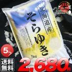 29年産 北海道産 そらゆき 5kg 白米 送料無料