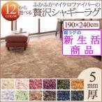 ラグマット ふかふかマイクロファイバーの贅沢シャギーラグ ミックスカラー 12色展開×6サイズ 毛がふかふかタイプ 長方形 190×240cm