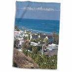 送料無料 タオル 3dRose デニータ Delimont - フランス - フランス、レユニオン島、サン ・ ルーには、町を見る - EU09 WBI1911 - ウォルター ・ Bibikow ・