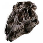 送料無料 インテリア 室内装飾ハロウィン ギフト ティラノサウルス ・ レックス恐竜の頭蓋骨標本樹脂スカル 正規輸入品