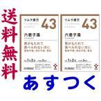 六君子湯 24包 ツムラ漢方薬 43
