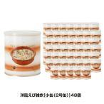 25年保存 非常食 サバイバルフーズ 洋風えび雑炊 大缶 1号缶/10食相当 ごはん ご飯 48缶セット 保存缶
