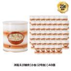 25年保存 非常食 サバイバルフーズ 洋風えび雑炊 小缶 2号缶/2.5食相当 ごはん ご飯 48缶セット 保存缶