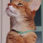 猫 首輪 鈴 おしゃれ かわいい necono ネコノ 猫の首輪 Luce Bell ルーチェ ベル ラタンボール