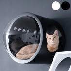 猫 キャットウォーク キャットステップ ベッド ハウス MYZOO マイズー Spaceship Gamma Monotone 宇宙船 ガンマ モノトーン