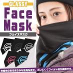 スノーボード フェイスマスク スノボ ウィンタースポーツ GLASSY グラッシー