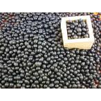 流通革命 兵庫県産 丹波黒豆 2Lサイズ 200g×20袋×10ケース