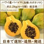 木瓜 - ハワイ産パパイヤ  4〜5個入り