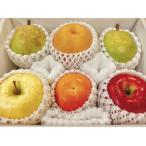 礼盒 - 旬の果物詰め合わせ 3,000円セット  贈答用
