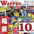 ワッペン アイロン 福袋 アイロンで一発貼り付け アップリケ男の子タイプ・女の子タイプ10枚 SET