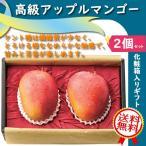 高級【アップルマンゴー】ケント種・化粧箱2個入りセット・ギフト・送料無料