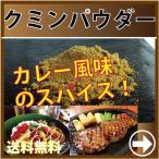 クミンパウダー カレー/エスニック/スパイス/薬味/調味料/香辛料/お試し/ポイント消化/メール便