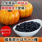 備長炭かぼちゃの種